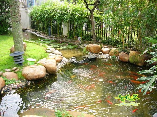 别墅庭院水池