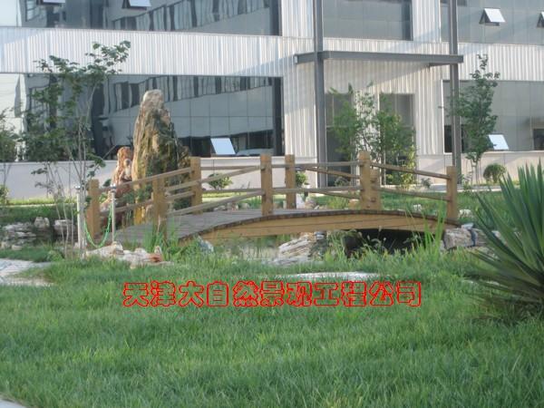 景观园林 天津假山,庭院设计,天津假树,保鲜棕榈树,室内仿真树,