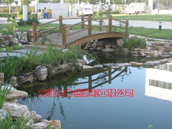 室内假山养龟池设计图展示